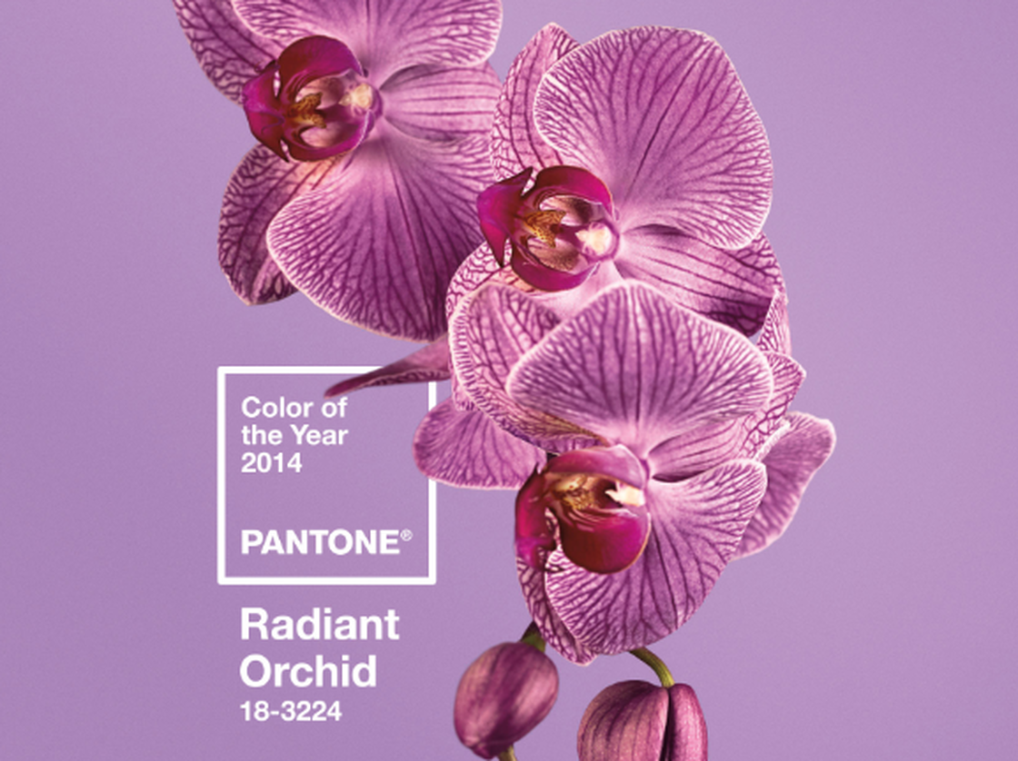 Radiant Orchid: Pantone Color of the year 2014 - Ruth Chafin ...